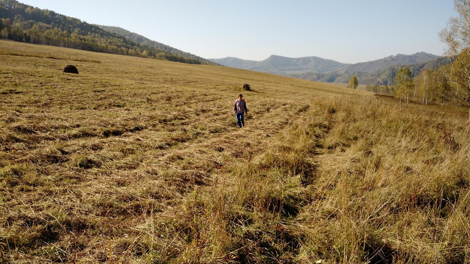 7-joan-in-fields-near-stream